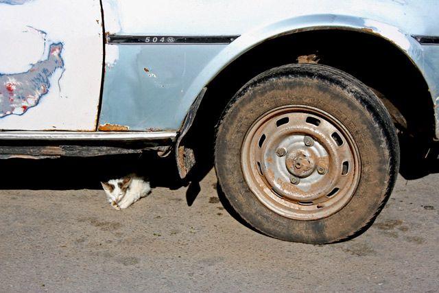 Zdjęcia: Na parkingu, El Jem, Kntrast, TUNEZJA