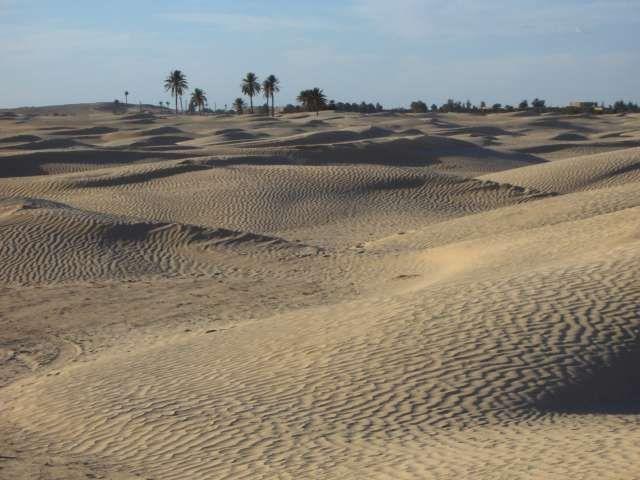 Zdjęcia: okolice Douz, Sahara, Sahara, TUNEZJA