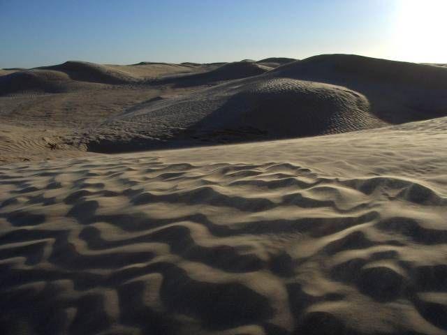 Zdj�cia: okolice Douz, Sahara, Sahara, TUNEZJA