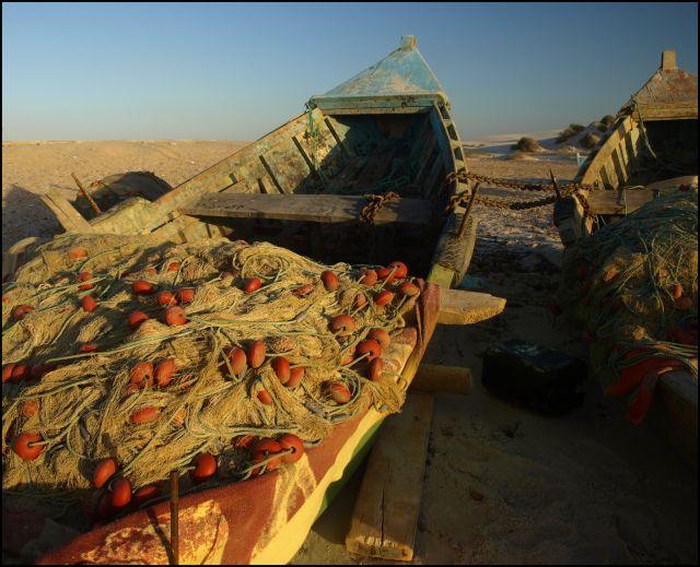 Zdjęcia: na południe od ostatnich zabudowań, Cedrji Plage , kto to rozplącze, TUNEZJA