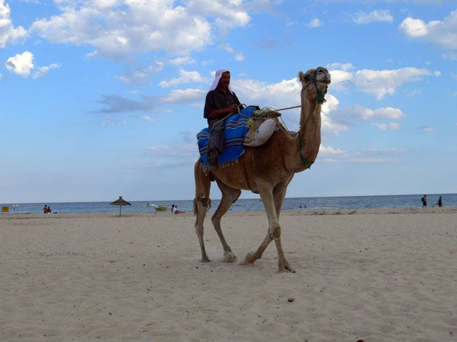 Zdjęcia: Hammamet, Kolejny tubylec na wielbladzie, TUNEZJA