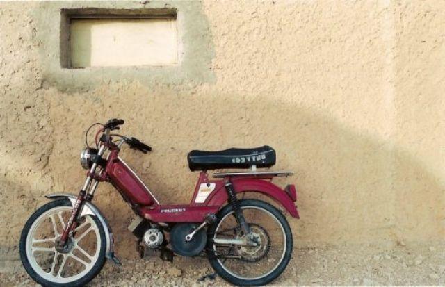 Zdj�cia: Djerba, Rumak4, TUNEZJA