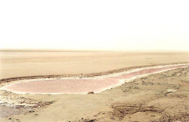 Zdjęcia: Tunezja, słone jezioro, TUNEZJA