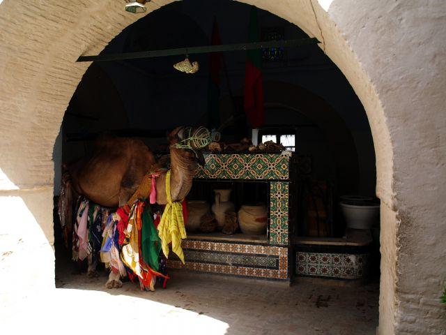 Zdjęcia: Tunezja, Kairuan, Studnia Bir Barouta, TUNEZJA