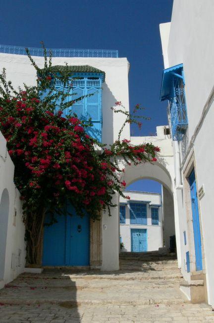 Zdjęcia: Sidi Bou Said, biało-niebiesko, TUNEZJA