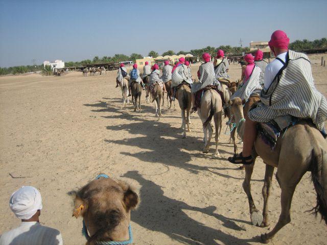 Zdjęcia: Douz, Sahara, Karawana, TUNEZJA