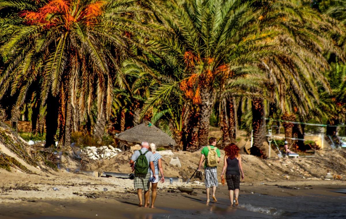 Zdjęcia: Susa, Susa, spacer pod palmami, TUNEZJA