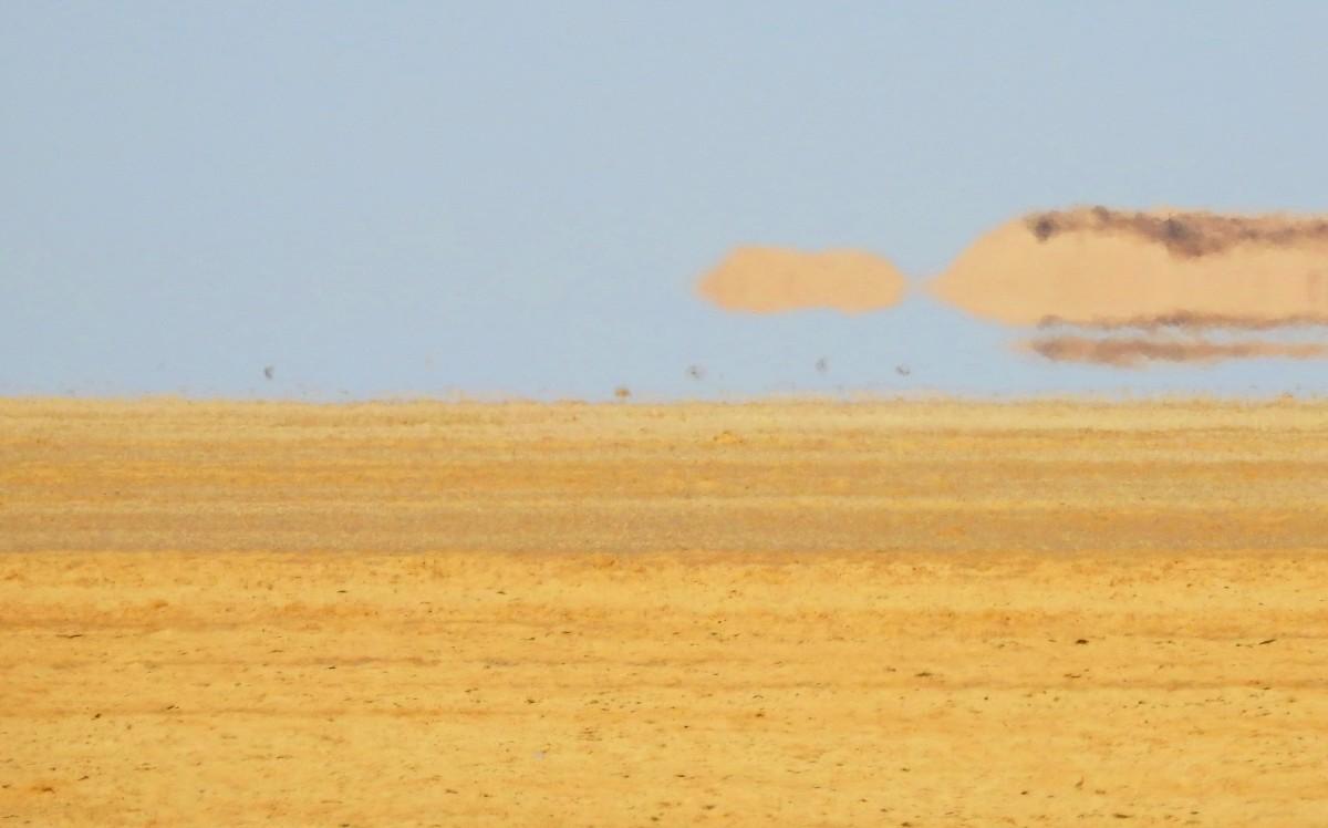 Zdjęcia: pustynia, Tozeur, Fatamorgana, TUNEZJA
