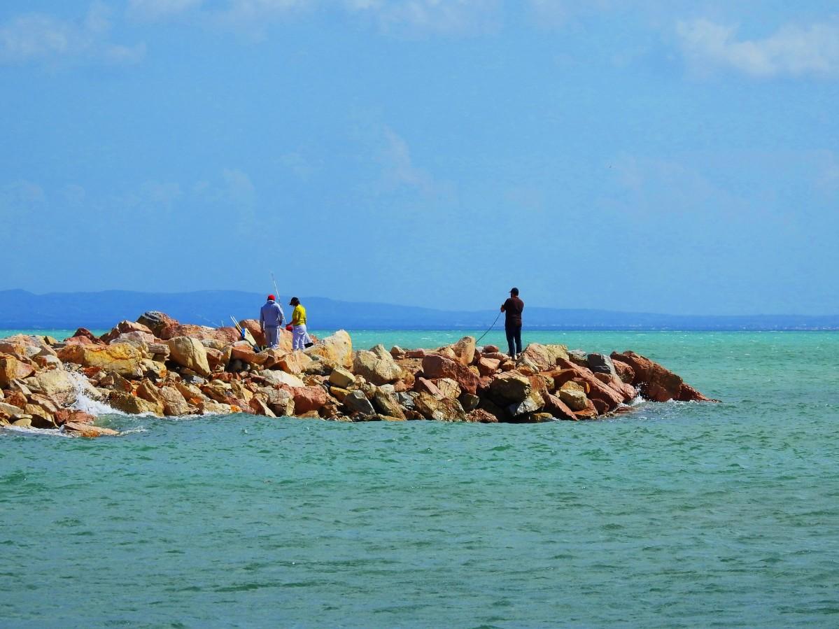 Zdjęcia: Kartagina, Tunis, Zatoka Tuniska, TUNEZJA