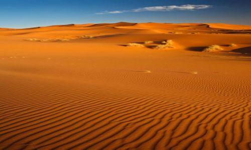 Zdjęcie TUNEZJA / Kebili / Douz / desert