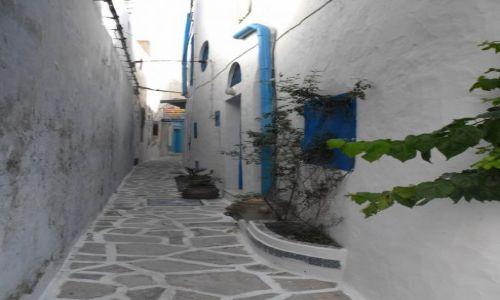Zdjęcie TUNEZJA / Hammamet / stara Medina / zaułki starej Mediny