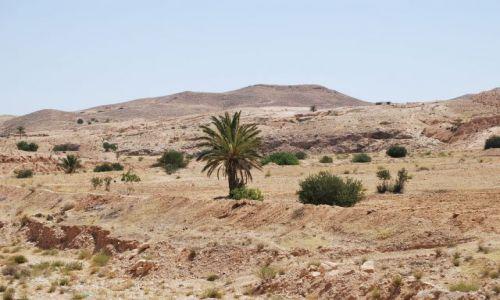 Zdjęcie TUNEZJA / Sahara / Stara Matmata / Na pustyni