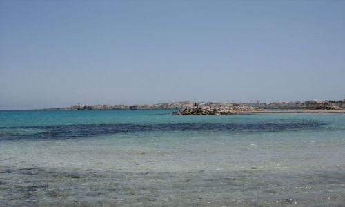 Zdjecie TUNEZJA / Sahel / Mahdia / Tunezja w maju