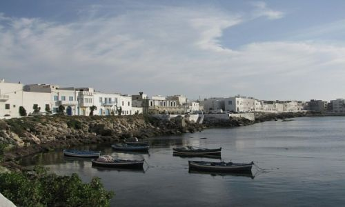 Zdjęcie TUNEZJA / wybrzeże śródziemnomorskie / Mahdia / port rybacki