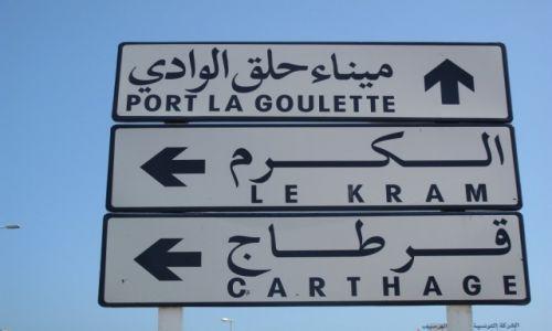 Zdjęcie TUNEZJA / Okolice Tunisu / Okolice Tunisu / A teraz w któru=ym kierunku?
