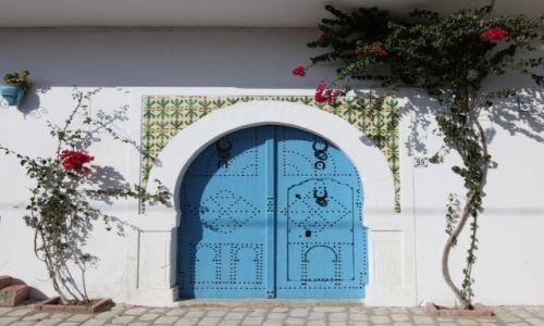 Zdjęcie TUNEZJA / Sahel Tunezyjski / Hergla / Drzwi