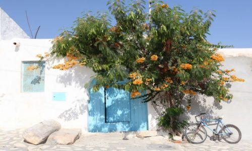 Zdjęcie TUNEZJA / Sahel Tunezyjski / Hergla / Ściana