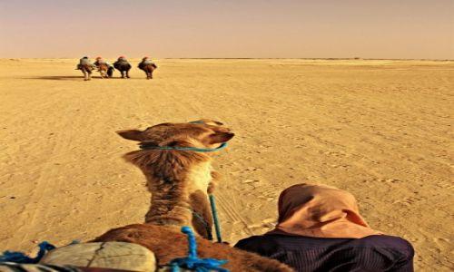 Zdjecie TUNEZJA / Sahara / Sahara /  Po Saharę i jej czarowne oazy.