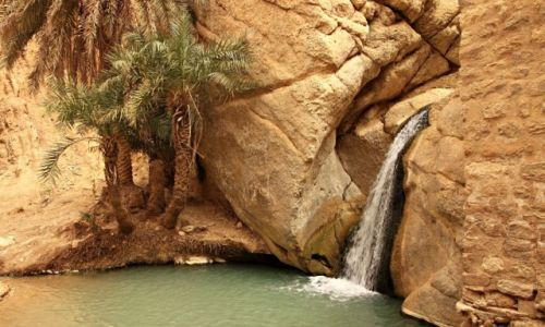 Zdjęcie TUNEZJA / Góry Atlas / Chebika / Górska oaza Chebika.