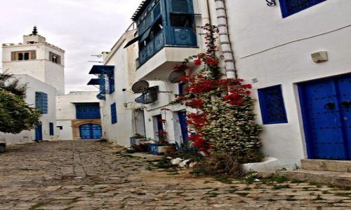 Zdjecie TUNEZJA / - / Wioska Sidi Bou Saïd, / Tunezyjskie Santorini.