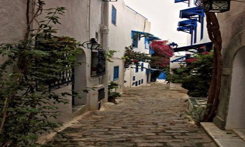 Zdjecie TUNEZJA / - / Wioska Sidi Bou Saïd, / Sidi Bou Said to jedno z najbardziej malowniczych miejsc w Tunezji