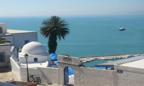 Zdjęcie TUNEZJA / tunezja / ok. Tunisu / widok na morze
