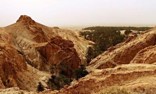 Zdjęcie TUNEZJA / Góry Atlas / Chebika / Wioska na skarpie otoczona oazą zieleni.