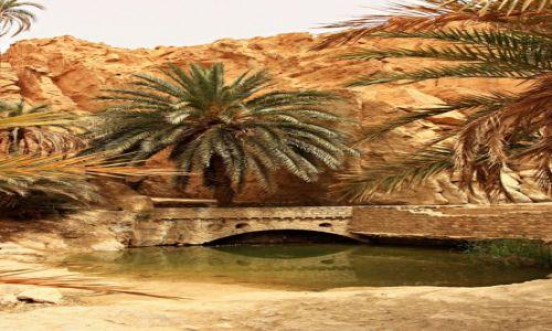 Zdjęcie TUNEZJA / Góry Atlas / Chebika /  Górskie oazy w Tunezji