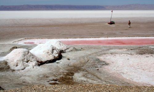 Zdjęcie TUNEZJA / Sahara / Chott el Jerid / Samotny kolorowy żagiel