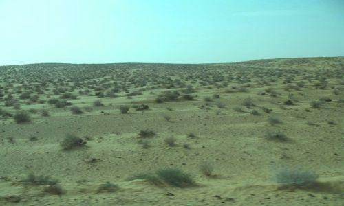 Zdjecie TUNEZJA / Sahara / Sahara / Na Saharze