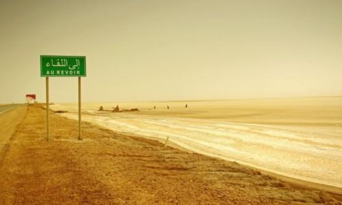 Zdjecie TUNEZJA /  środkowo-zachodniej Tunezji.  /  Szatt al-Dżarid  / Wzdłuż jeziora