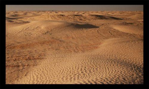 Zdjęcie TUNEZJA / Douz - / Douz / pustynia