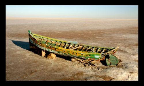 Zdjęcie TUNEZJA / chott el jerid / chott el jerid / nad slonym jeziorem