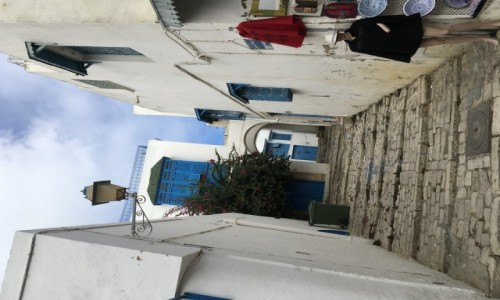 Zdjecie TUNEZJA / - / Tunezja / Pocztówki z Tunezji
