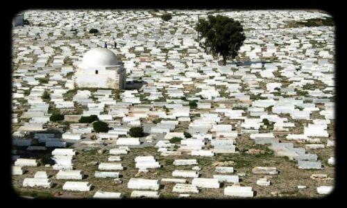 Zdjecie TUNEZJA / SAHEL / MONASTIR / Cmentarz Muzu�m