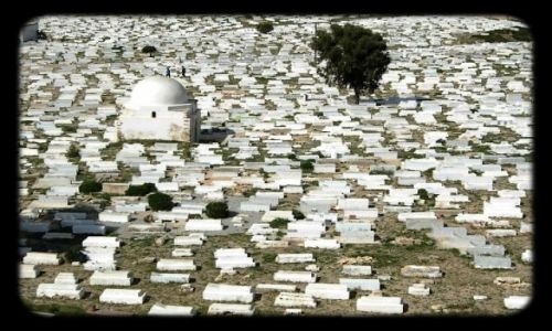 Zdjecie TUNEZJA / SAHEL / MONASTIR / Cmentarz Muzułm