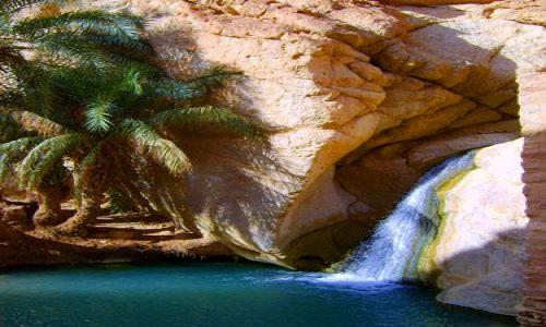 Zdjecie TUNEZJA / Chebika / 40 st C w cieniu :) / Trochę dzikiej Tunezji3