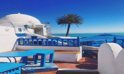 Zdjecie TUNEZJA / - / Tunis / TUNEZJA