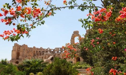Zdjecie TUNEZJA / Sahel Tunezyjski / El Jem / Widok na amfiteatr