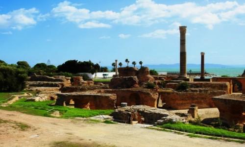 Zdjecie TUNEZJA / Tunis / Kartagina / Termy Antoniusza