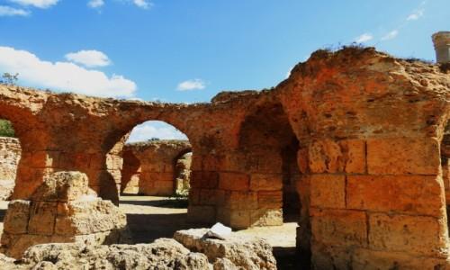 Zdjecie TUNEZJA / Tunis / Kartagina / Termy Antoniusza 2