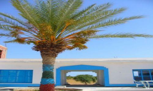 Zdjecie TUNEZJA / w drodze do Matmaty / przystanek / tunezja