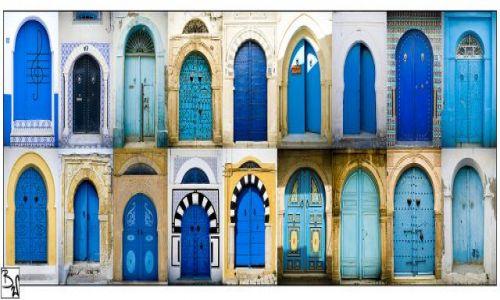 Zdjecie TUNEZJA / Tunezja / różne regiony Tunezji / THE DOORS