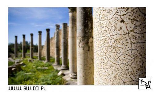 Zdjecie TUNEZJA / Środkowa część Tunezji - Dugga / Dugga / Dugga