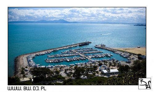 Zdjęcie TUNEZJA / TUNEZJA / SIDI BOU SAID / SIDI BOU SAID