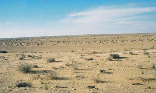 Zdjecie TUNEZJA / Sahara / w drodze do Douz / Sahara