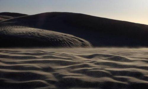 Zdjecie TUNEZJA / Sahara / okolice Douz / Sahara