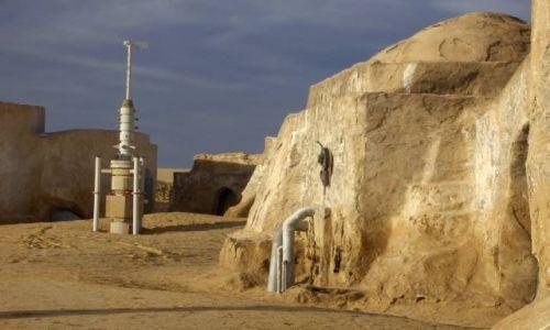 Zdjecie TUNEZJA / Sahara / okolice Kebili / Sahara