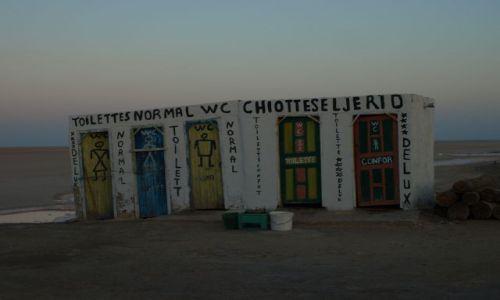 Zdjecie TUNEZJA / Chott el Jerid / pobocze / kolorowy akcent