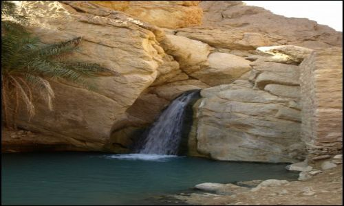 Zdjecie TUNEZJA / Oaza Chebika / dzięki tej wodzie coś tu rośnie.... / początek oazy